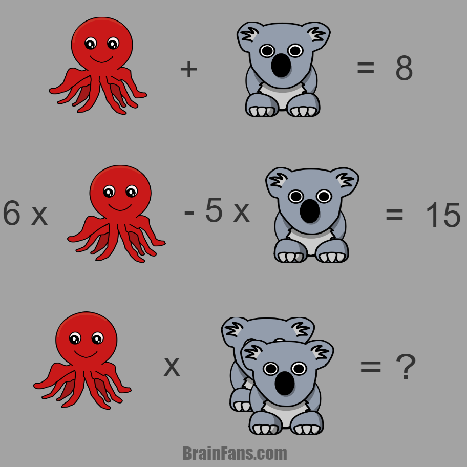 Octopus & Koala | Kids Riddles Logic Puzzle - BrainFans