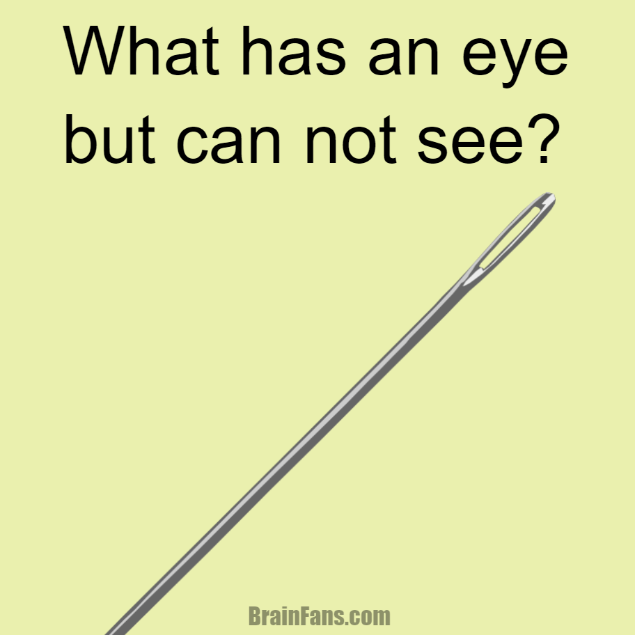 Brain teaser - Logic Riddle - what has an eye but cannot see? - What has an eye but can not see?